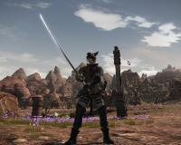 Way of the Samurai: FFXIV Guide to Level 60